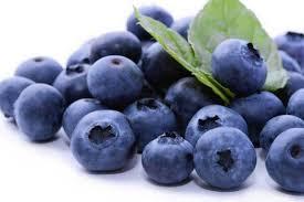Borovnica plod